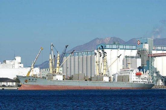 瑞智库称中国69式火箭筒已流入索马里海盗之手
