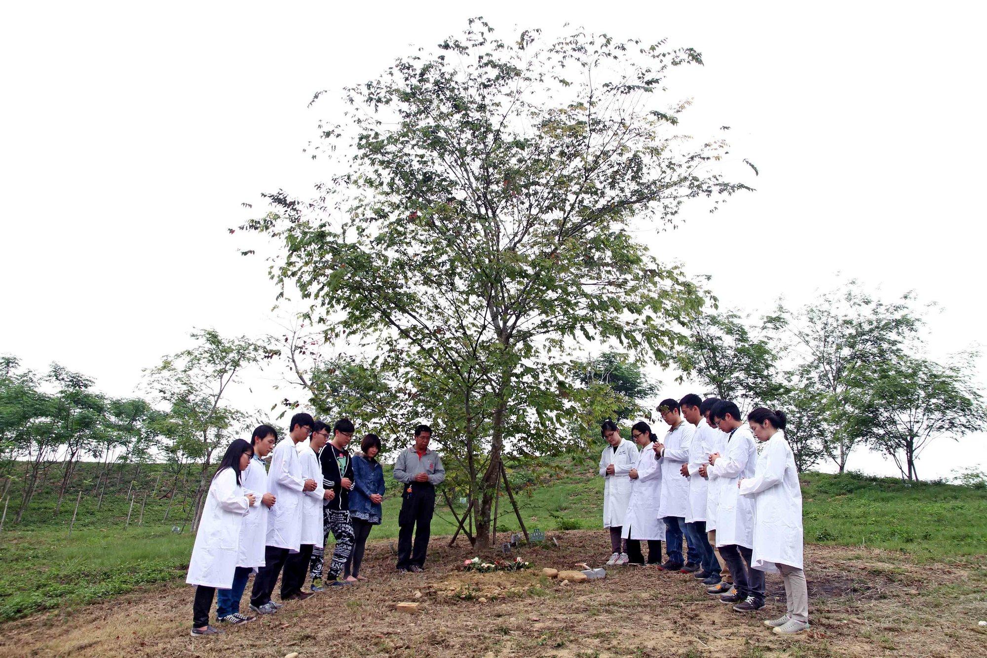 辅仁大学医学系的学生和林先生一家一起埋葬林太太。