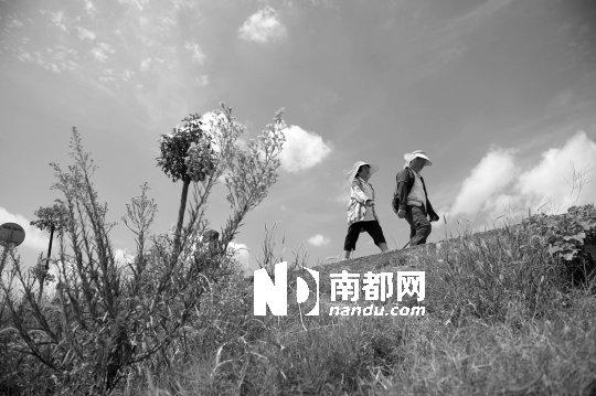8岁半女孩徒步700公里从深圳回湖南老家