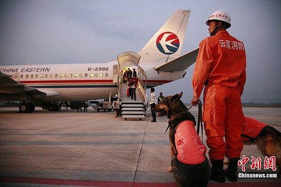 云南地震已致22人死亡 搜救犬驰援灾区(图)