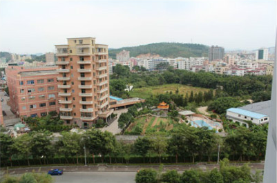 网曝深圳一社区主任有房80栋 坐拥20亿资产
