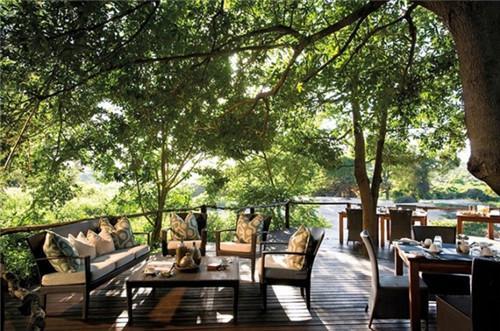 露宿在南非的星空下 冒险者喜欢的树屋酒店