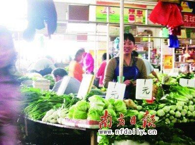 广东中山出现较大幅度蔬菜降价(图)