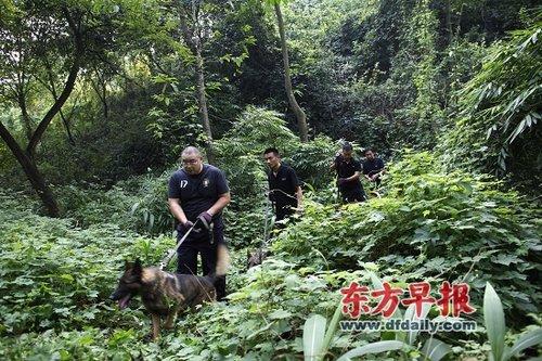 周克华挑选逃跑最慢路线 重庆军方奉命参加搜捕