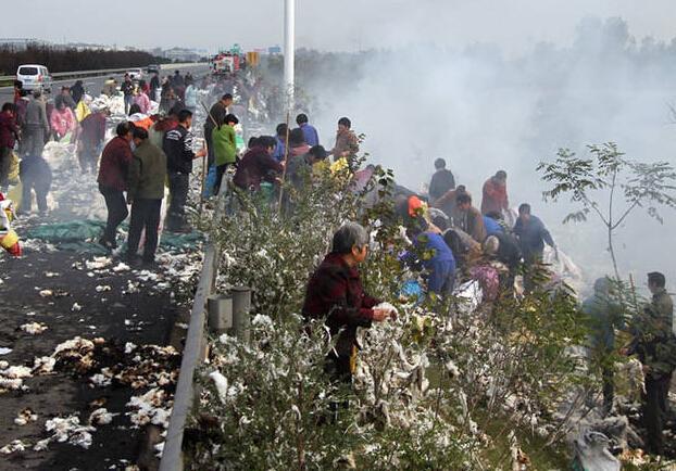 拉棉花货车着火 村民不顾消防队员阻拦哄抢棉花