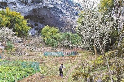 亚洲唯一穴居部落在什么地方 住近百苗族人 无人愿迁出