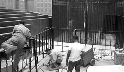 美媒称穆巴拉克今日将在铁笼内受审(图)