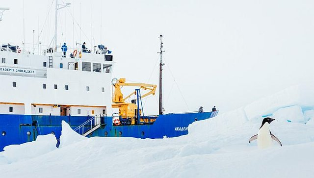 """中国破冰船""""雪龙号""""试图救援俄罗斯科考船未获成功"""