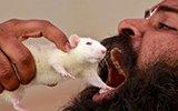 印度大旱 灾民摆亡者头骨抗议威胁吃老鼠
