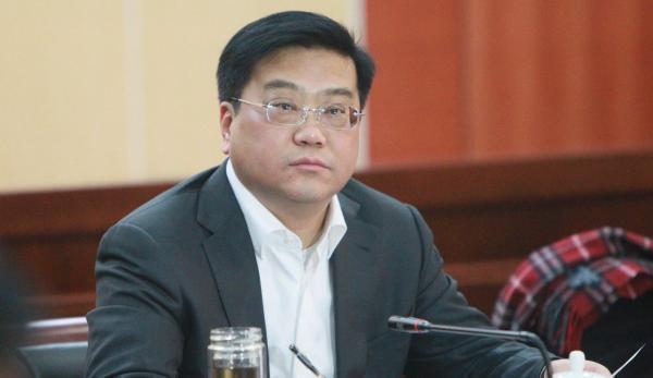 合肥市长张庆军落马其妻子中央巡视组回头看时坠亡