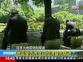 视频:分析人士指地震将使日本债务危机恶化