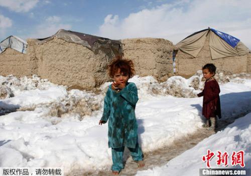 阿富汗难民在伊朗出车祸 造成20人死亡10人受伤