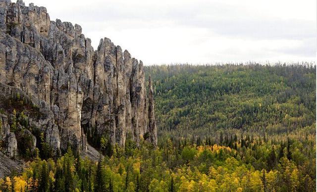 俄罗斯一产妇原始森林分娩 警察帮忙赶棕熊