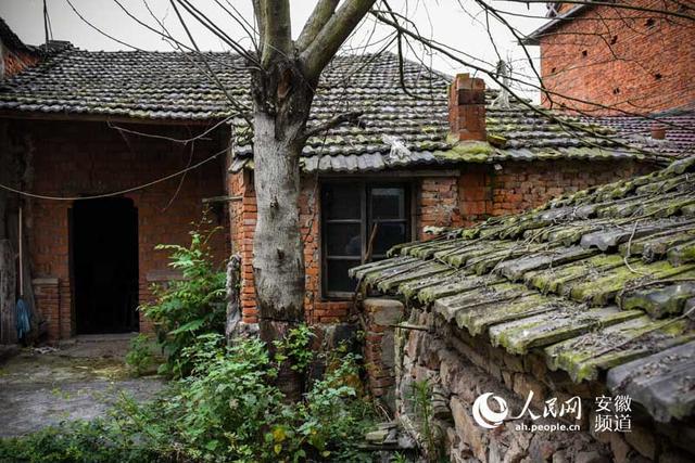 张月当初住的老房子,周晨霞看到女儿一个人生活,心酸不已
