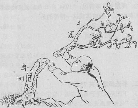 """反思:晚清""""立宪""""为何输给""""革命"""""""