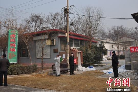 在发生疫情的虎凤鸡场门口,拉有警戒线并有两人专门看守。吕子豪摄