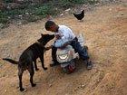 6岁艾滋孤儿独自生活