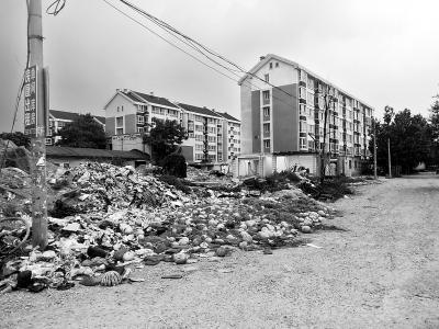 京郊一小区外惊现两米高百米长恶臭垃圾山