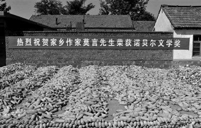 莫言家乡拟投6.7亿弘扬红高粱文化 官民均亢奋