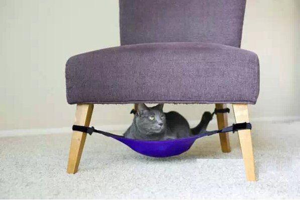 猫奴家居装修新花样 专属喵星人的猫舍设计