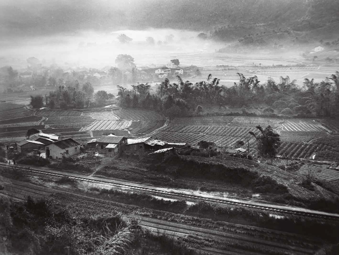 1951年,沙田。