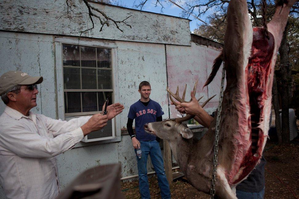 当地时间2010年11月28日,美国得克萨斯州奥斯汀,18岁的Spencer O'Loughlin感恩节周末和父亲Greg在牧场狩猎鹿和猪。Spencer在4天时间里花了8小时盲目地等待,却一无所获,不过他爸爸猎到了一头小鹿,然后指导Spencer进行剥皮和清理内脏等处理。