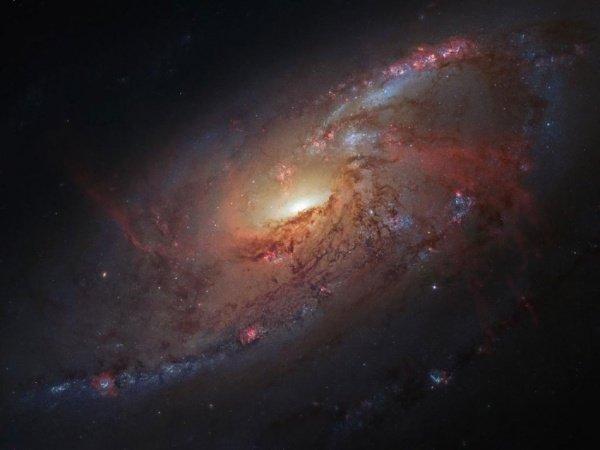 这张照片结合了哈勃空间望远镜拍摄的图像以及业余爱好者Robert