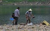 重庆市民河滩挖金子