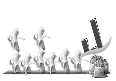 2010年菲律宾出口香蕉数额:欧盟:395.5万吨;沙特:35万吨;美国:415.7万吨;加拿大:47万吨;日本:104.8万吨;中国:81.9万吨;中国从菲律宾进口香蕉金额:2009年:2010年,2011年,1.55亿,0.28亿,3.67亿(单位:美元)制图/李铭