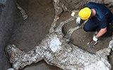 意大利庞贝古城遗址新发现 马匹遭火山喷发活埋