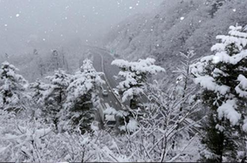 韩国首尔降下了今年冬天的首场雪。
