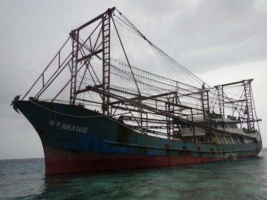 外媒称中国渔船在菲律宾搁浅 被查藏10吨穿山甲肉
