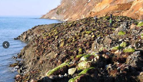 日本北海道一处海岸线隆起10至15米 原因不明