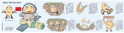 我国已有百余种航天农作物 太空乌鸡产蛋高30%