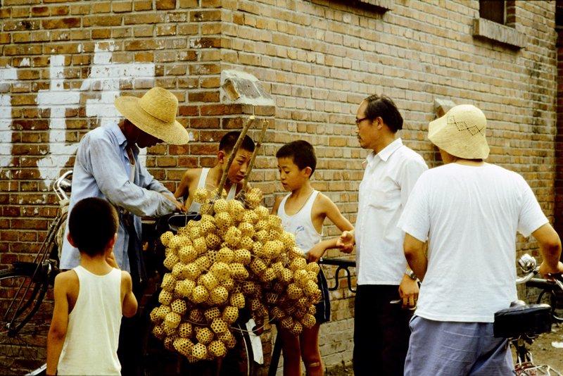 20世纪70年代,北京街头卖蝈蝈的小贩,自行车上挂满了蝈蝈笼子。买蝈蝈玩是当时孩子们的童年乐趣之一。