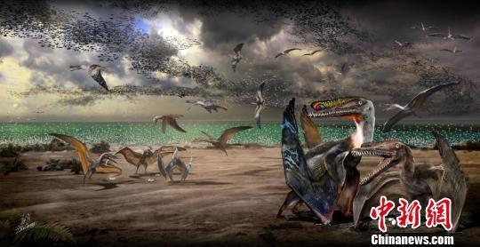 新疆哈密首次发现三维保存翼龙蛋及大量翼龙化石(图)