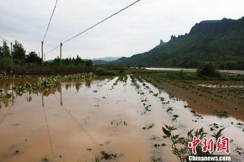 """""""苏拉""""侵袭江西 赣东南强降雨致道路农田受淹"""