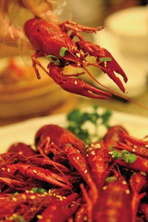 疾控中心确认肌溶解与食用小龙虾有关 属哈夫病_新闻_腾讯网 - 小黑牛 - 小黑牛的博客