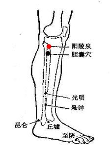 【转载】经常拍打八穴位,延年益寿少求医    (组图) - 安然 - 轩鼎紫气