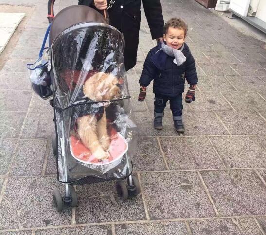 骑车老爸报警称路上把孩子颠掉踪降了,您何等很随便掉踪掉踪降宝宝的