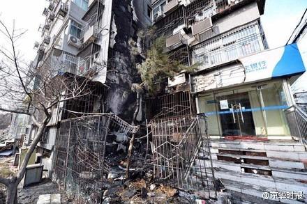 北京一小区内发生火灾 多只流浪猫被烧焦(图)