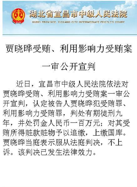贾晓晔因受贿一审被判有期9年 当庭表示不上诉