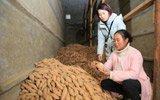 单亲妈妈带5岁女儿卖红薯,3年还清10万债攒下一套房