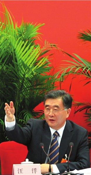 汪洋:乌坎选举没有任何创新 只是没再走过场
