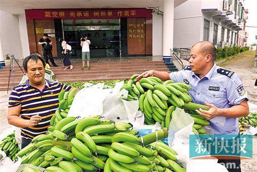 四人盗窃团伙凌晨作案 一次偷走香蕉两万斤