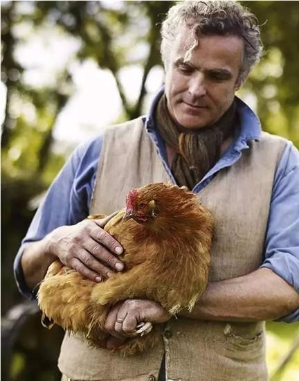 英国福利到底多好?夫妻辞职开养鸡场玩