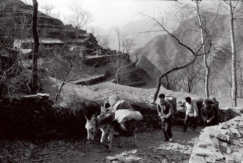 """1965年,""""背篓商店""""的职工赶着毛驴、背着货物送货上门。""""背篓商店""""是北京市原房山县(今房山区)周口店供销合作社的一个分销点。因地处山区,交通不便,黄山店公社的居民买东西很不方便,而这个分销社是黄山店公社范围内唯一的一家分销点。针对这种情况,分销社的负责人王砚香想出了用背篓送货上门的办法,带领职工常年背着背篓上山卖货,同时也收购一些农产品,被群众们亲切地称为""""背篓商店""""。"""