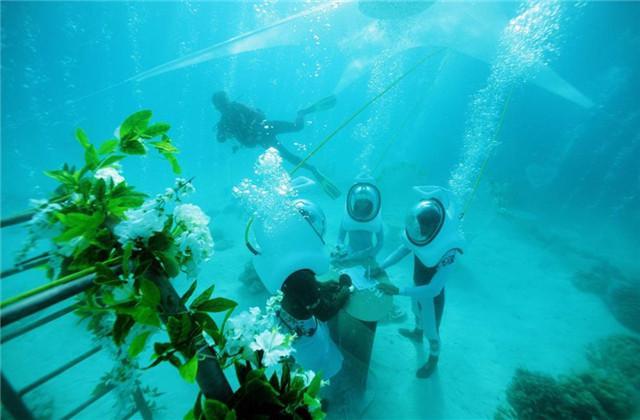 组图:新人举行水下婚礼 持续20分钟花费约2700欧元
