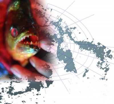 全球一百种恶性外来入侵物种 过半已侵入中国