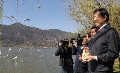薄熙来率重庆党政代表团考察云南 在滇池喂海鸥